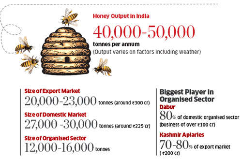 Bee-keeping business: 'Honey' Singh says no one in sight post Budget 2012