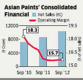 Low volume growth a major concern for Asian Paints