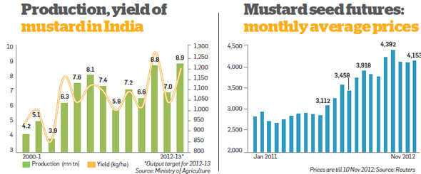Upbeat on mustard seed in the short term, says Naveen Mathur, Angel Broking