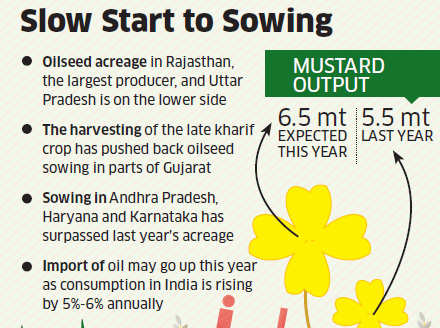 Mustard seed sowing tepid, extractors see pickup later