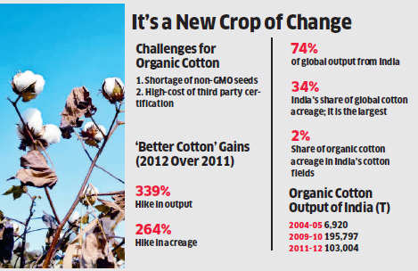 Organic cotton production declines in India as brands shift to Better Cotton Initiative