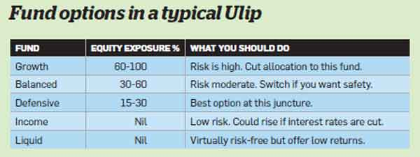 Use the tax-friendly Ulips to rebalance your portfolio