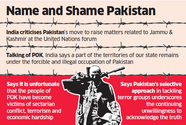 For the first time, India uses 'right to reply' to cut short Pak's Kashmir blame game