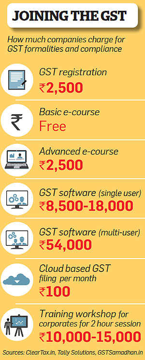How self-employed professionals, entrepreneurs, SMEs can get ready for GST