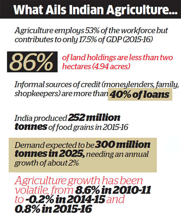 What Indian farmers really need: A total overhaul of fundamental economics of agriculture