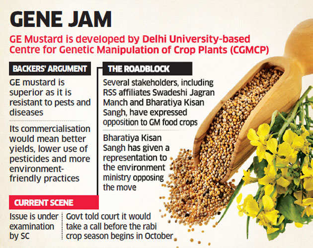 India in no hurry to grow GM food crops