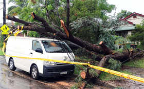 Sydney battered by cyclone-like storm