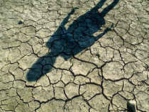 This year's frail monsoon has depleted Indian reservoirs to alarming levels last seen during the devastating drought of 2009.