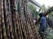 Speeding up work to decide on decontrolling the sugar sector, the Centre has sought the views of the state governments on the Rangarajan report by the month-end.