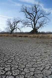 The monsoon has regularly stumped forecasters in the first decade of the 21st century, during which the country faced the driest June in 100 years.