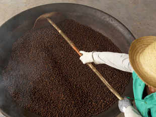 Global coffee exports stood at 75.70 lakh bags in October 2011. The coffee year runs from October to September. One bag contains 60 kg of beans.