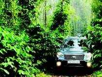 ET-Travel has reasons to believe that. We give a thumbs-up to the growing corporate trend of off-roading with your team to a coffee estate.
