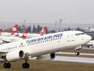 Turkish Airlines plans to double flights between Delhi and Istanbul and add Hyderabad and Kolkata as new destinations next year, its chief executive said