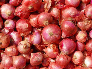 The government today said there is no proposal to ban export of onion and its prices in the domestic market are showing a declining trend. (Pic: BCCL)