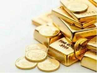 Chief Economic Advisor Raghuram Rajan pitched for making financial instruments more attractive to tame demand for gold.