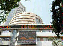 The S&P BSE Midcap Index was up 0.46 per cent and the S&P BSE Smallcap Index gained 0.54 per cent.