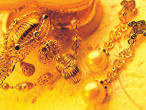 Stocks of gold loan companies, jewellery makers tumble
