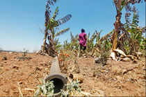 Maharashtra: Crop-loans to be restructured in drought-hit districts