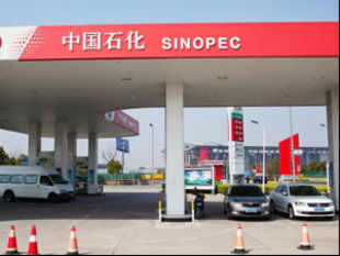 Sinopec has successfully flown a plane using a newly developed variant of biofuel made from palm oil and recycled cooking oil.