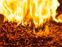 Environmentalist Vikrant Tongad sought directions to concerned authorities as well as these states to take steps to stop the practice of burning of agricultural residue/biomass.