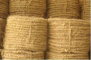 Coir products exports rose marginally by 5.20 per cent to 4.32 lakh tonnes (LT) in the 2012-13 fiscal on higher shipment of coir fibre, according to the Coir Board.