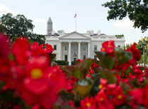 Indian-American negotiator Rohit Kumar quits as aide to top Republican