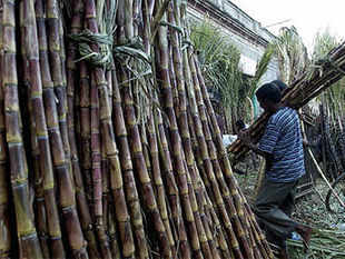 The sugar industry seems in trouble as the political pressure and refusal of banks to lend puts a question mark on the future of industry in Uttar Pradesh.