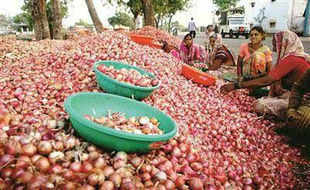 With onion prices soaring, Delhi HC asked the Centre and Delhi government to take steps to ensure that prices of kitchen staple are brought down.