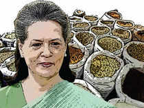 Sonia Gandhi believes the poor need to be shielded from the vagaries of the market and they must get the benefits the market refused to share with them.