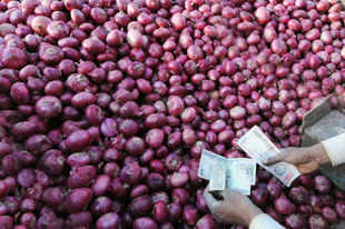 It is expected that there would be a higher production of onion in the kharif season across the country which will ease the pressure on onion prices.