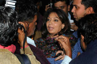 SC gives 3-month to complete scrutiny of Niira Radia's transcripts