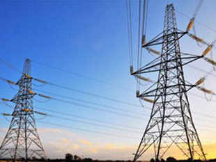 The Delhi cabinet had approved the subsidy for the January-March quarter and it was to be reviewed as the government had ordered a CAG audit of power companies.