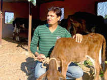 Patil chose organic farming as a chance to do something more meaningful in life. He started work on a website to connect organic vegetable growers with customers.