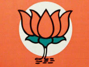BharatiyaJanataPartyfirst identified its target groups and accordingly designed its advertisement campaigns for the Lok Sabha elections.
