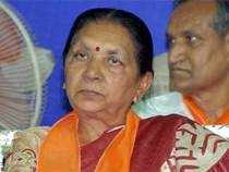 In 1994, Patel was nominated to theRajyaSabhaand she represented the country at the Fourth World women's Conference at Beijing
