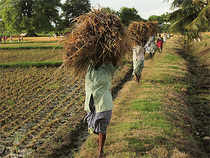 Moderation in food prices will help combat the impact of the expected weakness in this year's monsoon. Analysts say the fear of El Niño phenomenon, which usually weakens monsoon, is looming large over the farm sector.