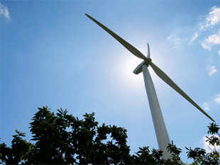Annual growth rate of renewable energy in India in the last decade has been about 22 per cent, said Seetharam, permanent representative to IRENA.