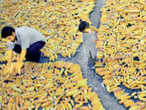 India's main priority is to buy food at support prices from farmers, more than 50 per cent of the population, stock it and supply it to the poor at low prices.