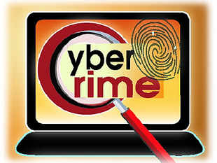 The Narendra Modi government has created a cyber-security chief's position under the Prime Minister's Office and has appointed Gulshan Rai.