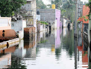 The dismal picture of manufacturing is partly attributed to December's incessant rainfall in Chennai, which heavily affected the sector.