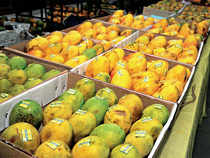 The company has already set up plans to expand to rest of Maharasthra, Gujarat, Madhya Pradesh and other states within next six months, it added.