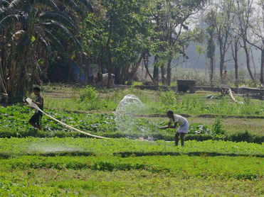 How FM is trying to raise rural incomes to revive growth