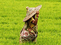 India is unlikely to become one of the top three agriculture export countries of the world by 2020 due to high domestic consumption base and limited arable land.