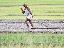 A government statement said that the PM asked for this while examining the progress of the digitisation of land records, a mission mode project under Digital India programme.