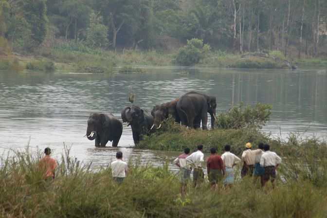 man wildlife conflicts India grapples with wildlife-human conflict i prefer the term animals involved in conflict rather than man eater man-eater is a complicated term.