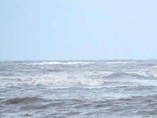 Sea India