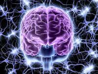 Brain scans reveal hidden consciousness in patients