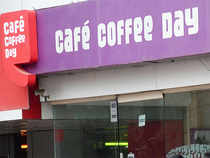 Owner of CCD has offered a 10-year access to his plantations, which stretch across 13,000 acres in the Western Ghats district.