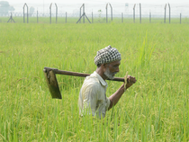 Large number of Farmer Producer Companies and farmer groups have come forward to take direct marketing licenses.