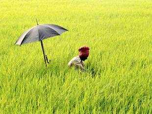 The agricultural growth in India has been nearly stagnant over the last two or more decades in the absence of any major reforms in the sector and bad monsoons takes it down further below as has been the case in the last two years that saw below normal monsoon.